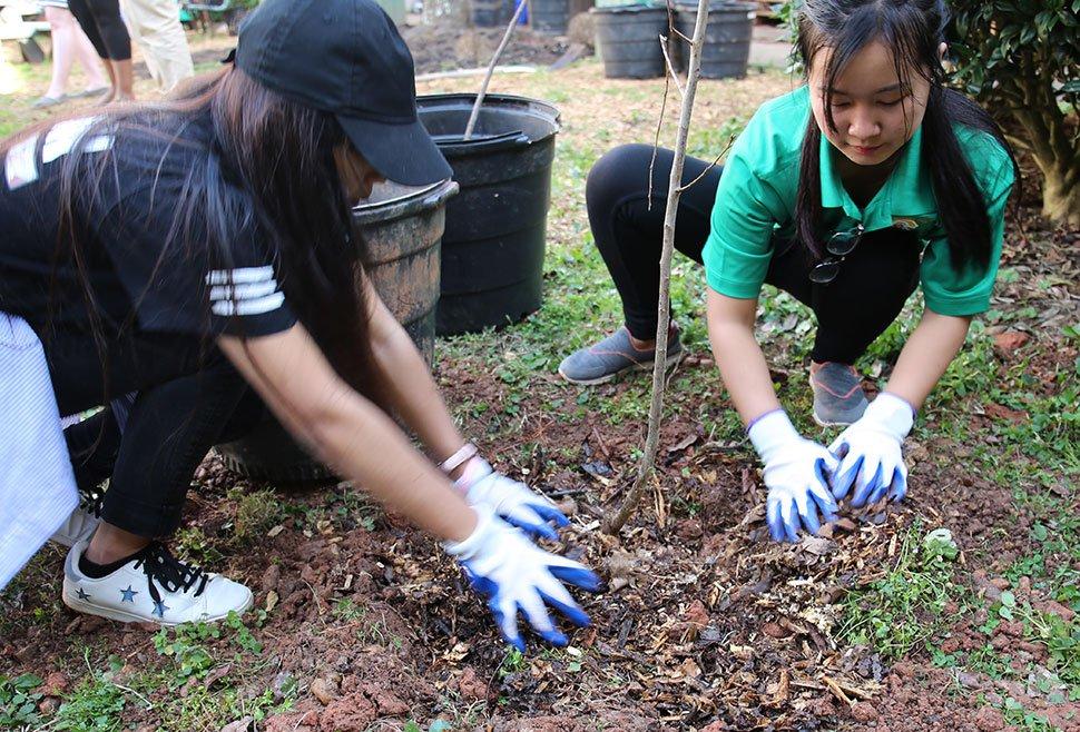 Friends Khin Se and Mi Meh plant a goji berry tree courtesy of ALFI at the Clarkston High School garden.
